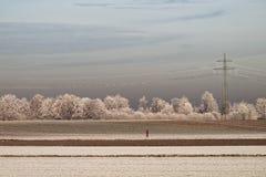 Jogging kobieta w frosted polach Zdjęcia Royalty Free