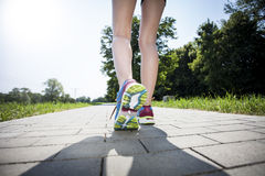 Jogging in the morning Royalty Free Stock Photo
