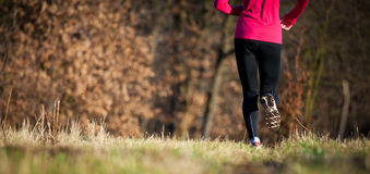 Jogging outdoors in a meadow Stock Photography