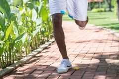 Jogging in the park Royalty Free Stock Photos