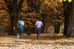 Jogging in park Royalty Free Stock Photos
