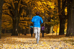 Jogging in the park. Young men jogging in the park, fall time royalty free stock photography