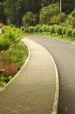 Jogging Path. A jogging path way at garden stock image