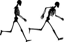 Jogging skeletons. Silhouettes of jogging skeletons Stock Photography