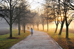Jogging track Royalty Free Stock Photo