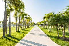 Jogging track at green park garden Stock Image