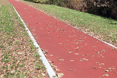 Jogging track in the park. Autumn edition. Royalty Free Stock Photography