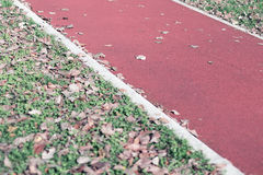 Jogging track in the park. Autumn edition. Royalty Free Stock Images