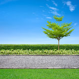 Jogging track. Roadside view, grass and tree on blue sky Royalty Free Stock Photos