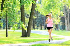 Jogging woman running in park. In sunshine on beautiful summer day. Sport fitness model of mixed Asian / Caucasian ethnicity training outdoor for marathon royalty free stock image