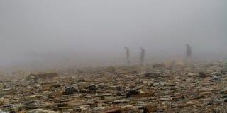 Joggings Fossil, Nova Scotia, Canada. Bay of Fundy, Nova Scotia, Canada. The highest tide in the world stock image