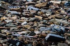 Joggings Fossil, Nova Scotia, Canada. Bay of Fundy, Nova Scotia, Canada. The highest tide in the world stock photography