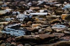 Joggings Fossil, Nova Scotia, Canada. Bay of Fundy, Nova Scotia, Canada. The highest tide in the world stock photo