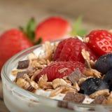 joghurt Lizenzfreies Stockbild