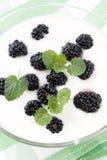 Joghurt mit Beeren Stockfotografie