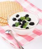 Joghurt mit Beeren Lizenzfreie Stockbilder