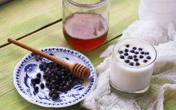 Joghurt mit frischen Blaubeeren Lizenzfreies Stockfoto