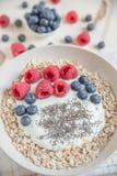 Joghurt mit frischer Frucht Stockfotos