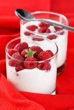 Joghurt mit Himbeeren Stockbild