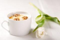Joghurt mit Honig und Muttern Lizenzfreie Stockfotos