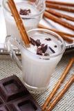 Joghurt mit Schokolade stockfotografie