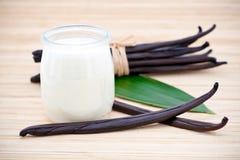 Joghurt und frische Vanillebohnen Lizenzfreie Stockfotos