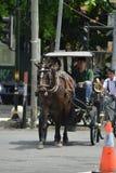 Jogjakarta, Indon?sia march23, 2019: um motorista de t?xi com os turistas de espera de um cavalo em torno da cidade fotografia de stock royalty free
