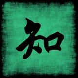 Jogo chinês da caligrafia do conhecimento Fotografia de Stock Royalty Free