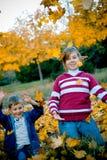 Jogo com folhas Imagem de Stock