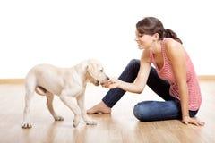 Jogo com um filhote de cachorro Fotografia de Stock Royalty Free