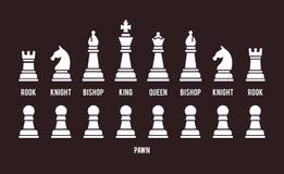 Jogo completo de partes de xadrez ilustração do vetor
