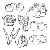 Jogo da fruta e verdura Fotografia de Stock Royalty Free