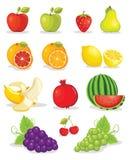 Jogo da ilustração das frutas Fotografia de Stock