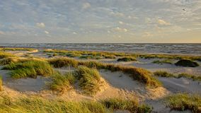 Jogo da luz e de sombra nas dunas ao longo do mar Báltico Imagem de Stock Royalty Free