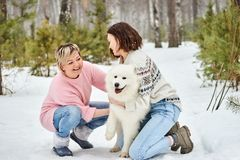 Jogo da mãe e da filha com o cão no inverno a floresta fotografia de stock