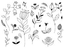 Jogo das flores Imagens de Stock Royalty Free