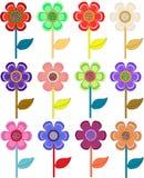 Jogo das flores Foto de Stock