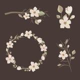 Jogo das flores Fotografia de Stock Royalty Free