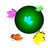 Jogo das folhas de plátano coloridas ilustração do vetor