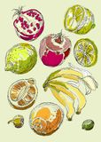 Jogo das frutas Desenho da carta branca Imagens de Stock