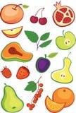 Jogo das frutas e de bagas ilustração stock