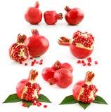 Jogo das frutas maduras da romã isoladas no branco Fotografia de Stock
