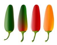 Jogo de 4 pimentas do jalapeno Imagens de Stock