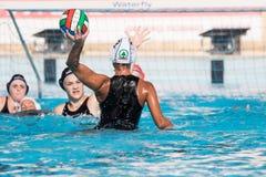 Jogo de ação do polo aquático Foto de Stock Royalty Free