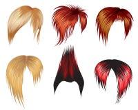 Jogo de amostras do estilo de cabelo Foto de Stock