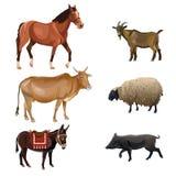 Jogo de animais de exploração agrícola ilustração do vetor