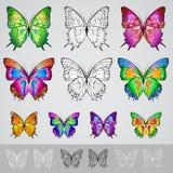 Jogo de borboletas coloridas diferentes Fotografia de Stock Royalty Free