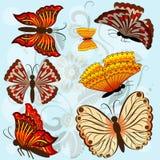Jogo de borboletas coloridas outono Fotografia de Stock Royalty Free
