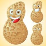 Jogo de caracteres dos desenhos animados da expressão da cara do amendoim Fotografia de Stock