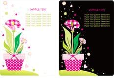 Jogo de cartão da flor Fotos de Stock